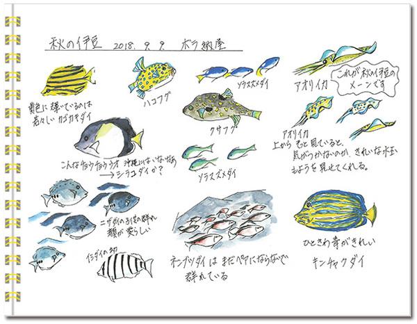 sketch_izu-autumn01.jpg