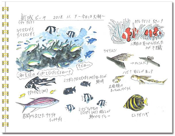 sketch_miyako2018-02.jpg