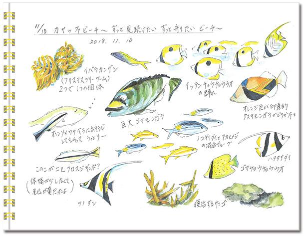 sketch_miyako2018-03.jpg