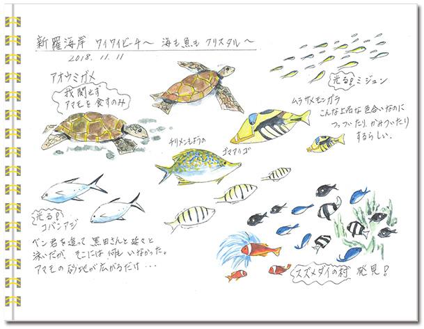 sketch_miyako2018-04.jpg