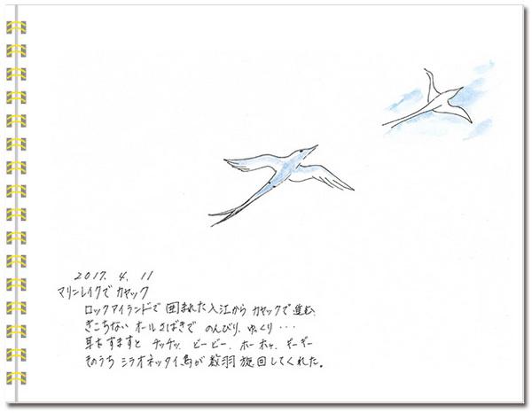 sketch_palau06.jpg