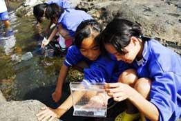 海岸生物観察授業