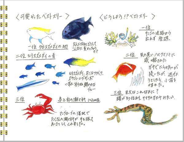2013年6月 宮古島2