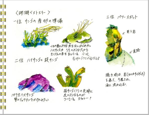 2013年6月 宮古島4