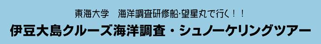 伊豆大島クルーズ海洋調査・シュノーケリングツアー