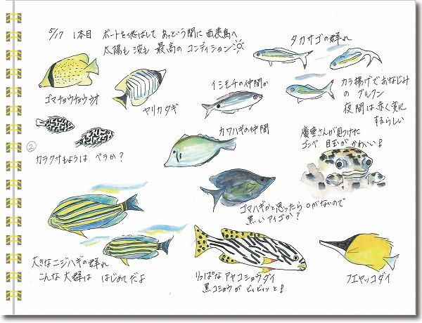 石垣島2015年5月17日