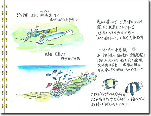 石垣島2015年5月17日午後