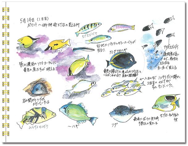石垣島2016年5月14日
