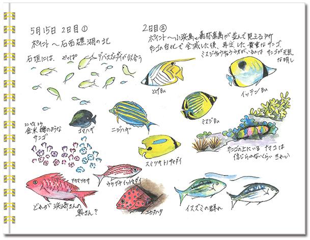 石垣島2015年5月15日