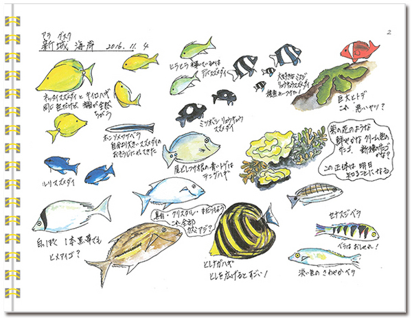 sketch_miyako02.jpg