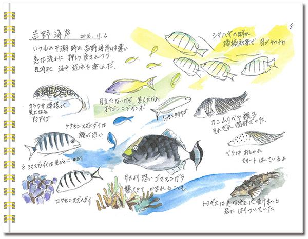 sketch_miyako05.jpg
